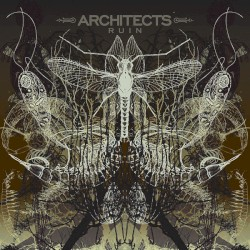 Ruin by Architects