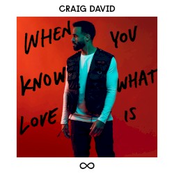 Craig David - When You Know What Love Is